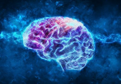 What you need to know about Neuroplasticity